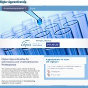 Higher Apprenticeship design